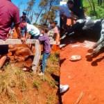 Indignación por muerte de caballos en cuadreras