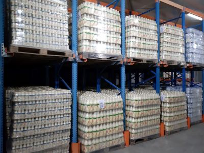 00 Alex Agrocom HQ - Depozitare-refrigerare 38