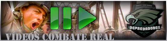 videos-combate-real