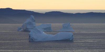 Icebergs y capa de hielo