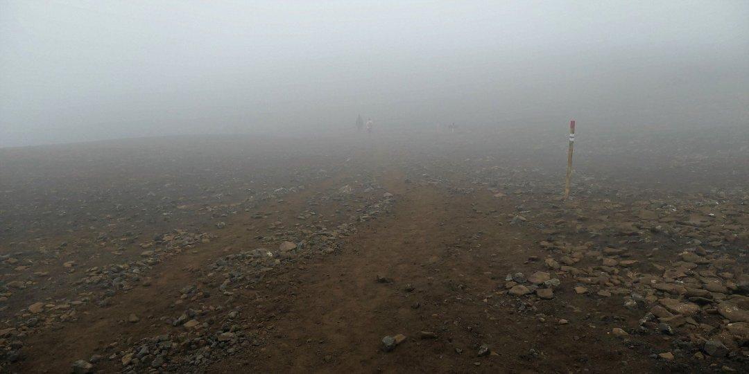 Avanzando entre la niebla