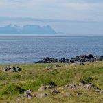 En la península de Vatnsnes