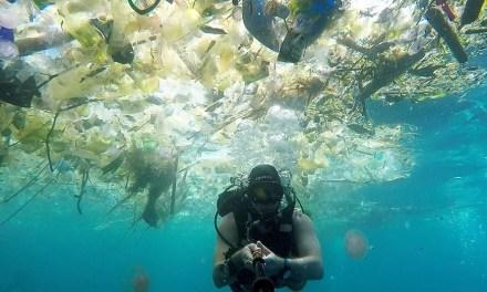 Plastique : Un plan Marshall pour les océans