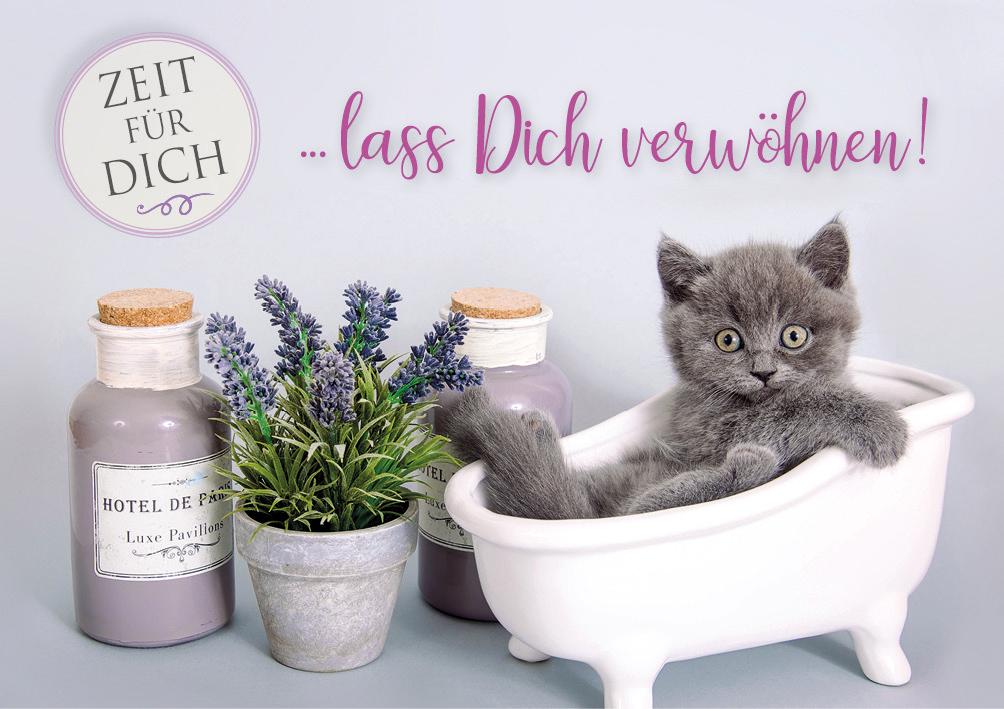 Doppelkarte Grusskarte Katzchen In Badewanne Lass Dich Verwohnen