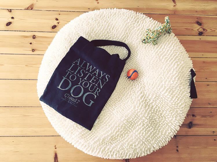 Bild Blogbeitrag Umzug mit Hund