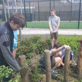 tuin werken (5)