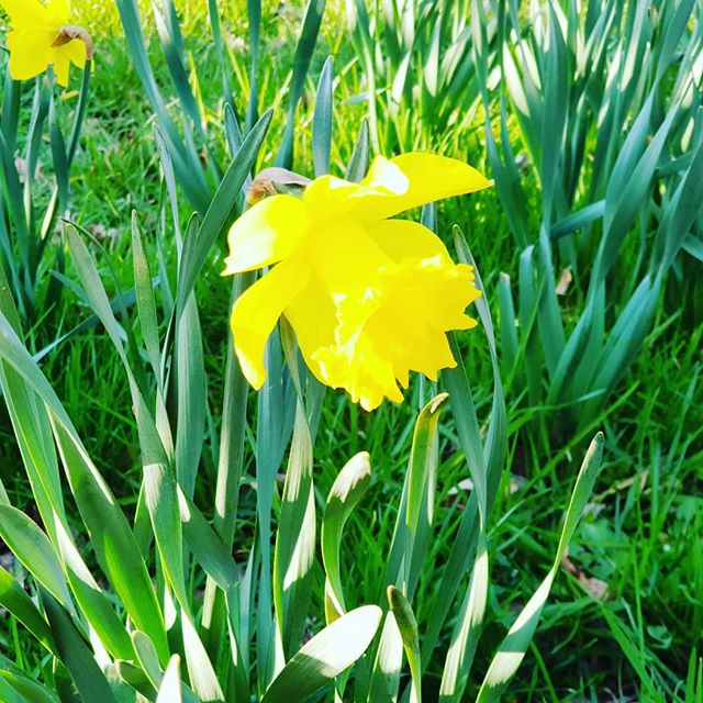 Was für ein schönes Wetter an Ostern