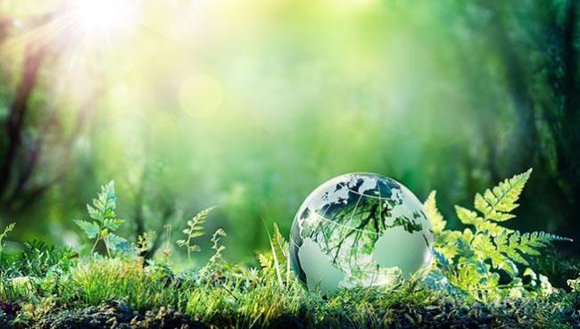Over 30000 vitenskapsfolk i USA sier ar CO2 ikke er farlig for miljøet. Tvert imot.