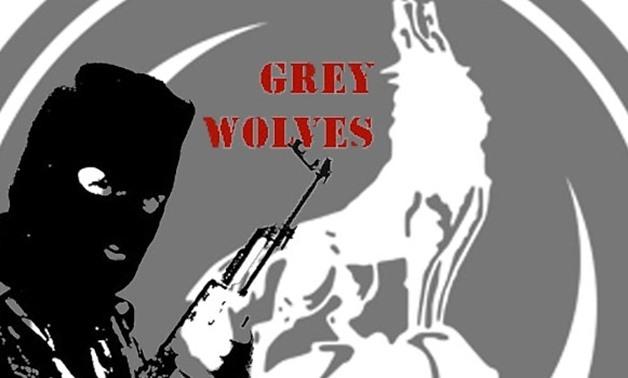 """Den nasjonalistiske tyrkiske bevegelsen """"De Grå Ulvene"""" vil nå bli forbudt i Frankrike."""