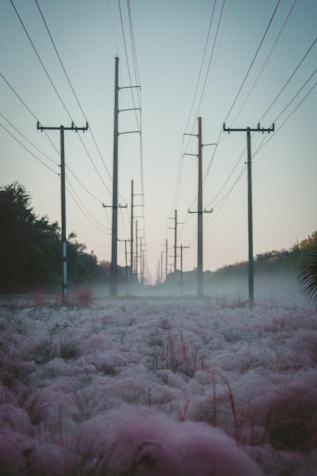 Covid-19 er ingenting sammenlignet med bortfall av el-kraft sier Klaus Schwab. Er det en advarsel eller trussel?