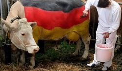 Almanya nasıl Sam Amca'nın sütlü ineği oldu?