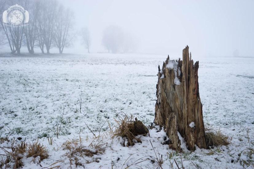 Der Inselfotograf - Rügen - Schnee