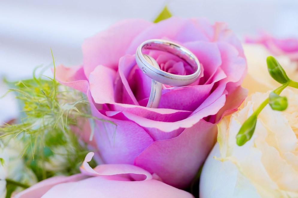 Ringe und Blüten
