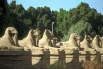 Mısır ve Hermes Okulu