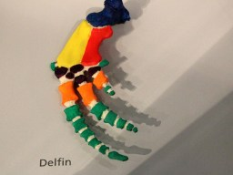 Hand-Skelett eines Delfins (Foto: Rüdiger Hengl)