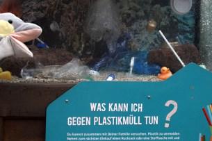 Umweltschutz im Tierpark Hellabrunn (Foto: Rüdiger Hengl)