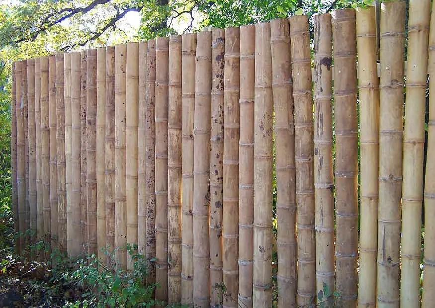 einfacher sichtschutz aus bambusrohr halbschalen