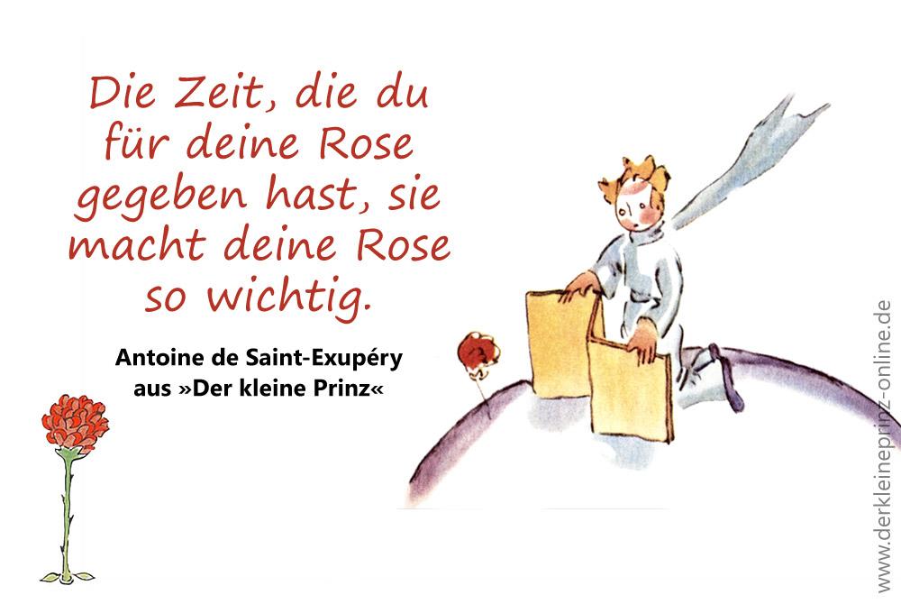 Zeit Du Fur Deine Rose Gegeben Hast Sie Macht Deine Rose So Wichtig