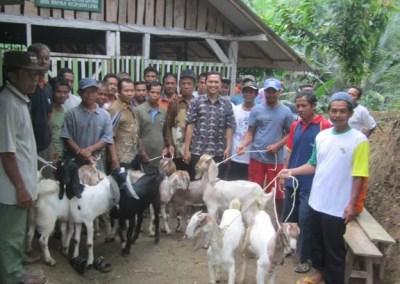 Kelompok Tani Ternak Wana Aji Desa Dermaji Berikan Hibah Kambing pada Pokja LMDH