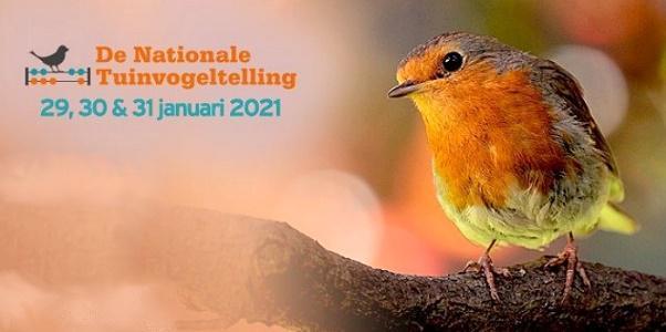 folder nationale vogeltelling 2020