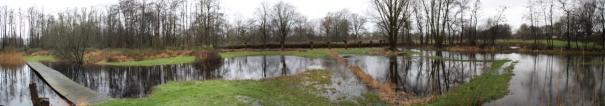 lage graslandjes in de winter onder water