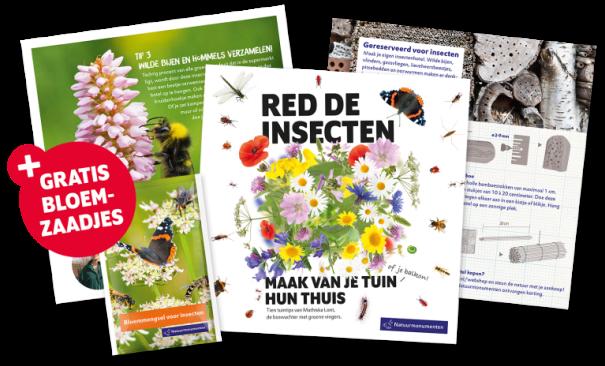 folder insecten