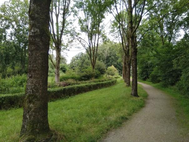 voorkant natuurtuin vanaf wandelpad