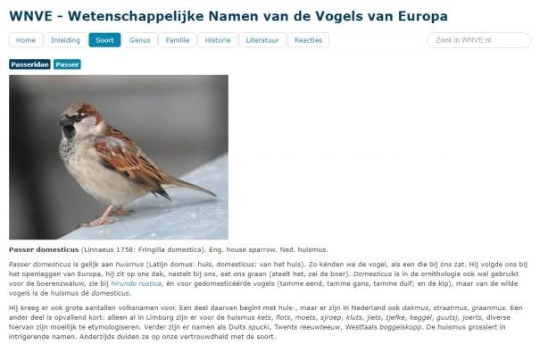 artikel wetenschappelijke namen vogels