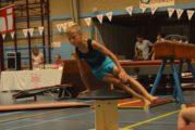 De Eemnesser Gymnastiek Verening, ook wel bekend als EGV, bestaat 50 jaar