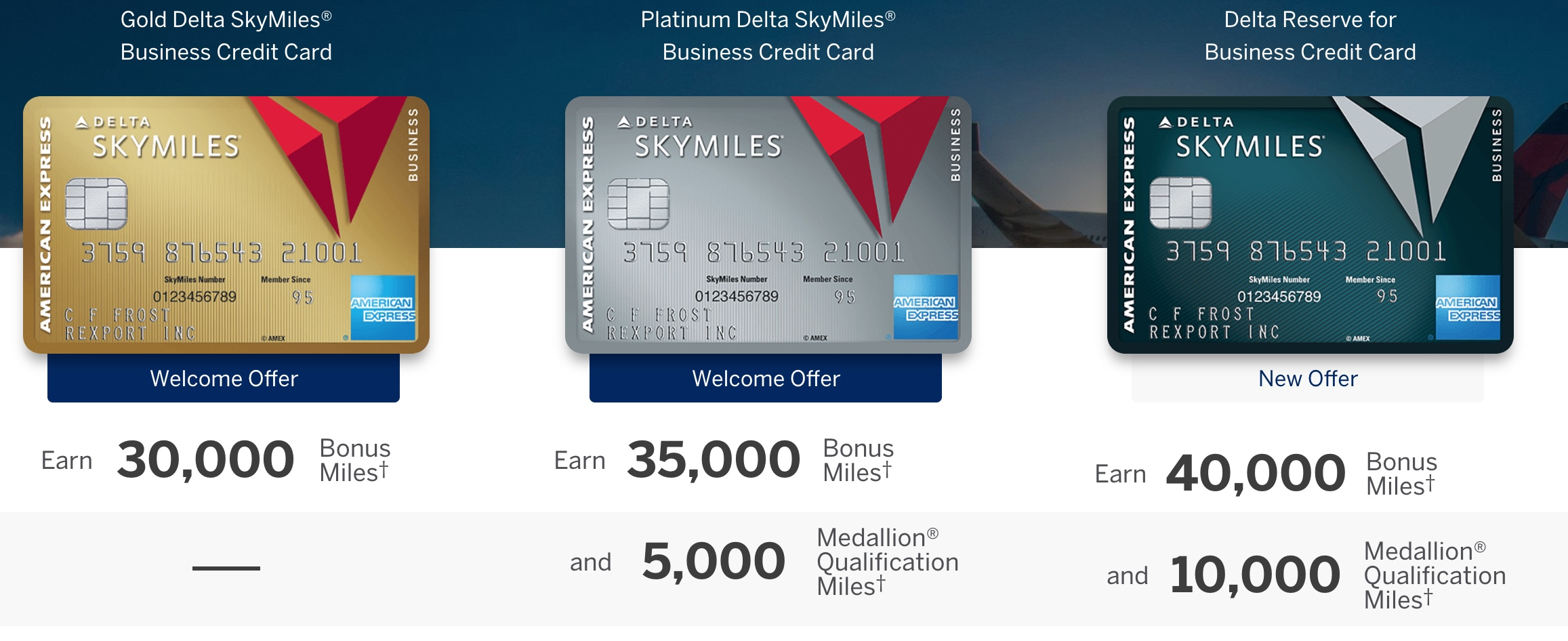 Wanted: Your AmEx Delta Biz Referral Links | The Derp Report