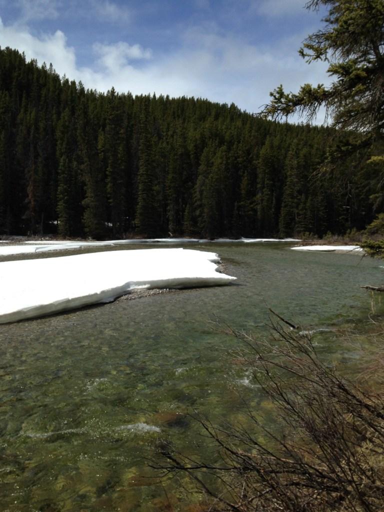 Lake louise - Parc National de Jasper