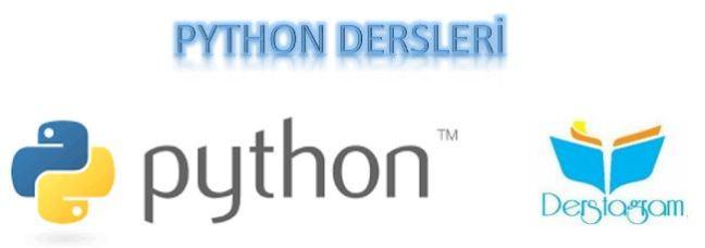 python web frameworks nedir