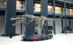 Dinosauri Giganti dall'Argentina in mostra a Padova - Ottobre 2016 / Febbraio 2017