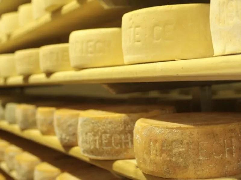 Il formaggio Monte Cesen