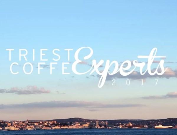 trieste coffee experts 2017 dersut