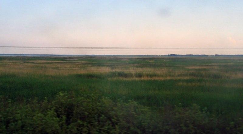 landschap waar de Russische Dwerghamster leeft