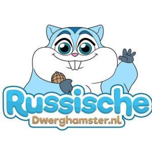 russische dwerghamster