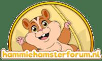 hamsterforum