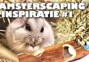Hamsterscaping inspiratie deel 1