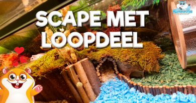 hamsterscape met loopdeel bodembedekking