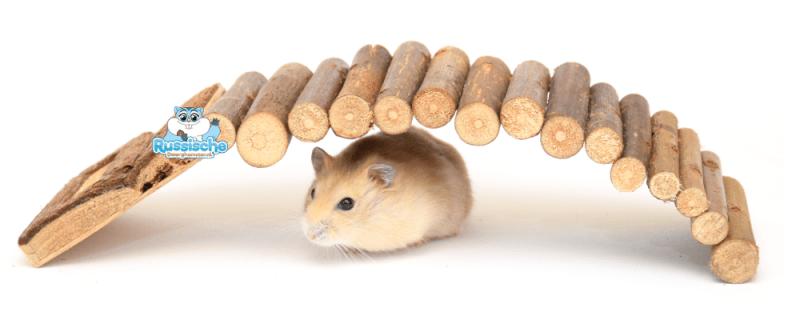 wilgenbrug huisje hamster en dwerghamster