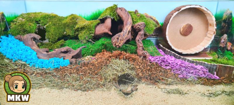 foto van een hamster terrarium ingericht met hamsterscaping