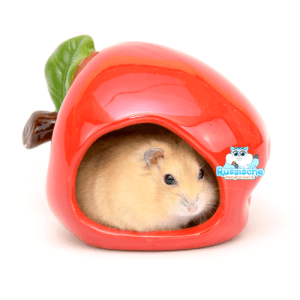 happy pet keramiek hamsterhuisje huisje appel dwerghamster