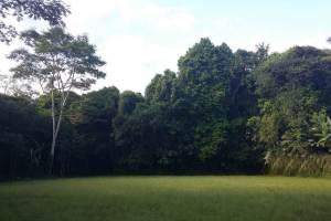 Contoh Tema Outbound di Bali Nuansa Budaya Camping Ground