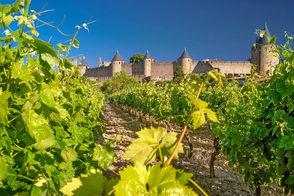 Aude, Carcassonne, Occitanie, Patrimoine, Région Languedoc, Saisons, South of france, Sud de France, printemps