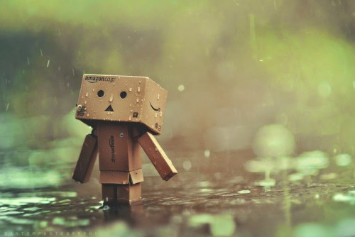 danbo_in_the_rain
