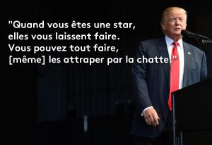 donald-trump-chatte