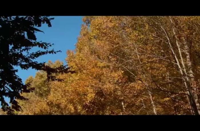 Prezentare Mehedinți – From legend to present (official HD)