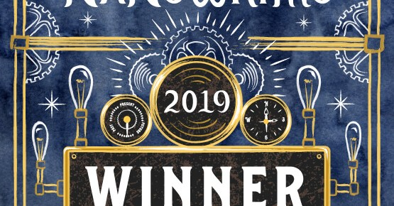 NaNoWriMo 2019 Winner, et la suite