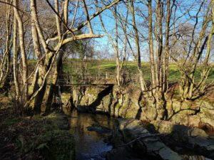Balade le long de la rivière